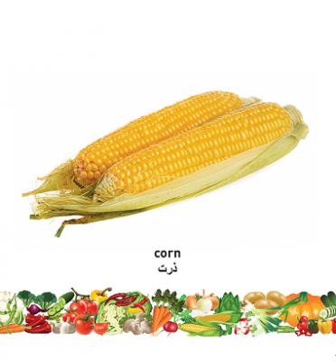 Vegetables (English–Farsi) Milet